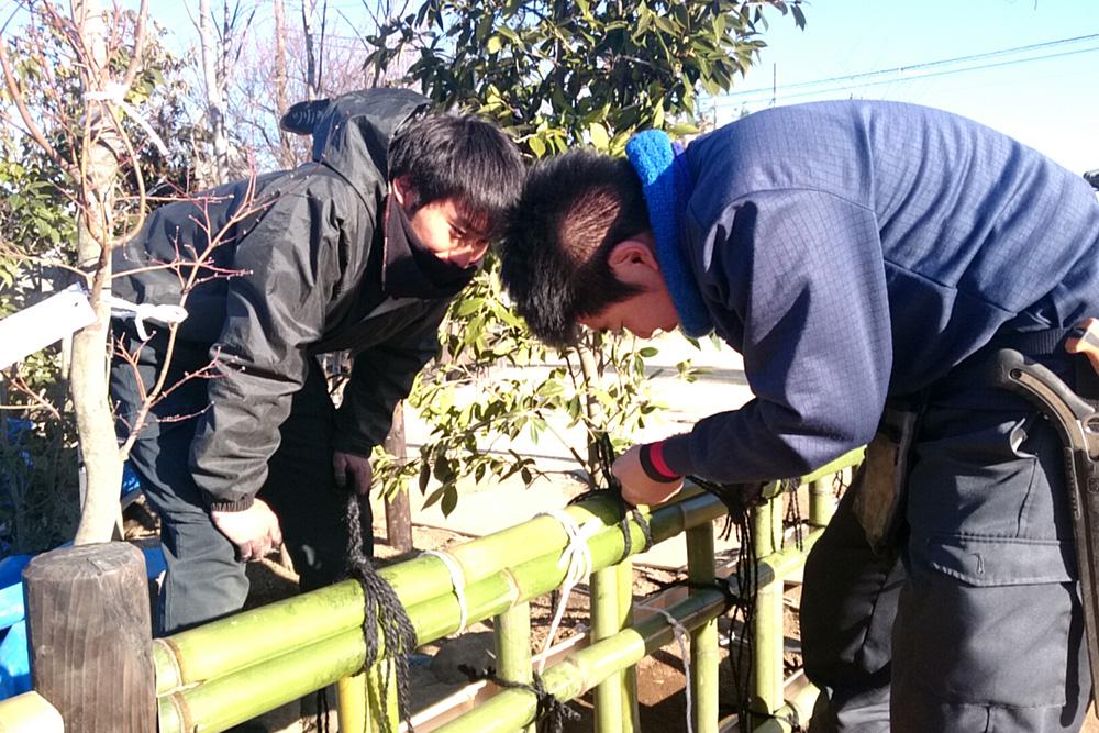 卒業作品庭園施工②
