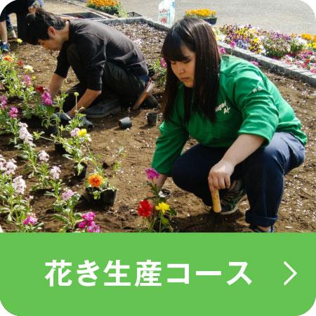花き生産コース(埼玉校)
