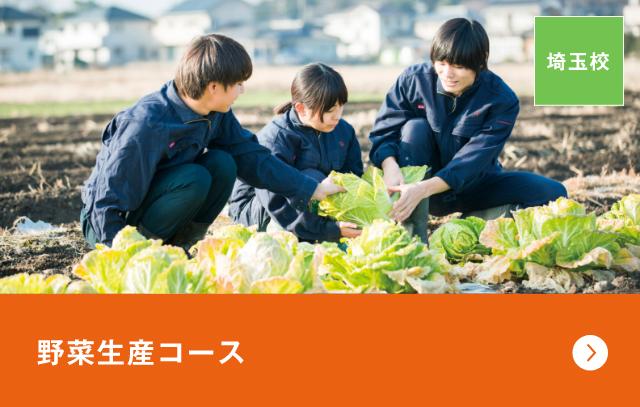 花と野菜の農業ビジネスコース〈野菜生産専攻〉