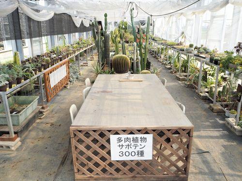 多肉植物の見本・栽培ハウス